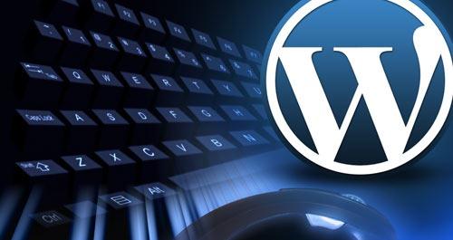 adding category image WordPress